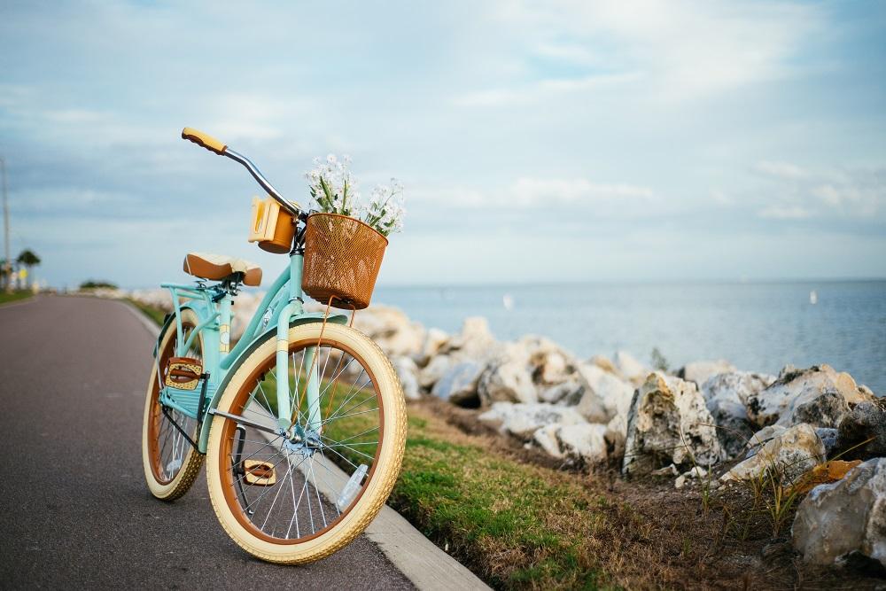 rower marki batavus